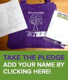sustainability pledge box