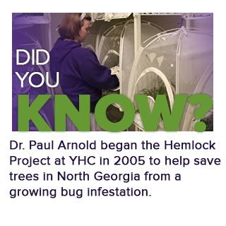 hemlock project info